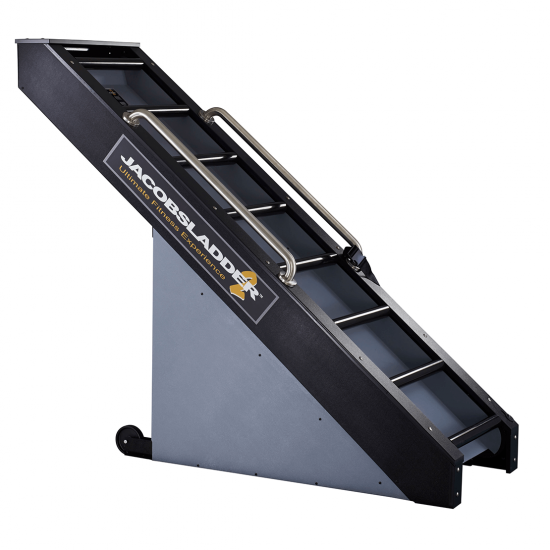 Jacobs Ladder 2 Gym Equipment